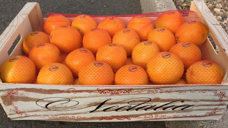 naranjas-002