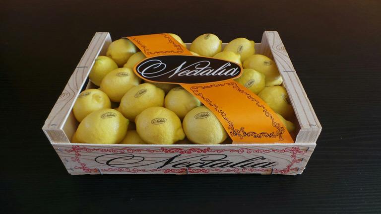 limones-1