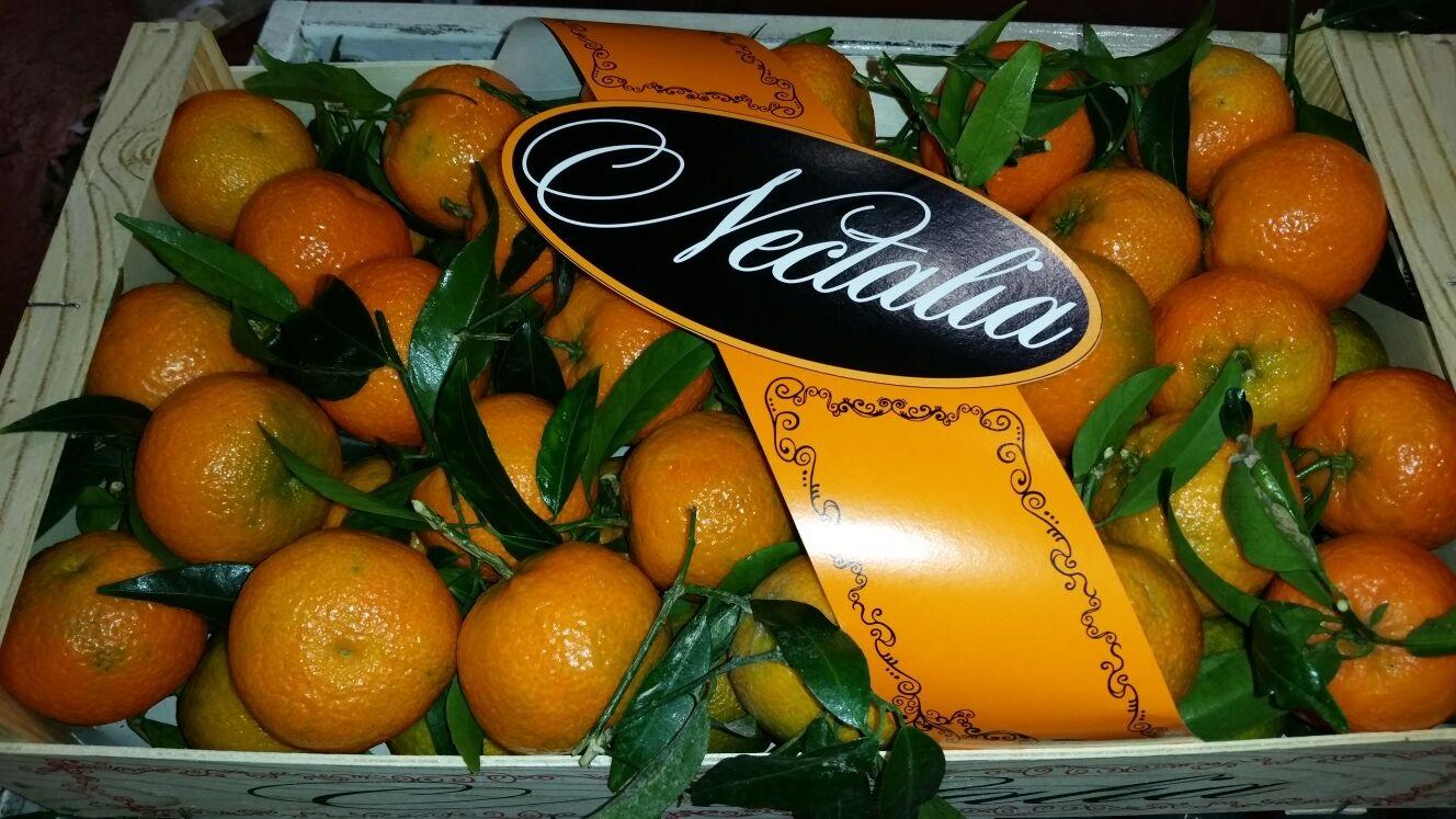 clementinas con hoja