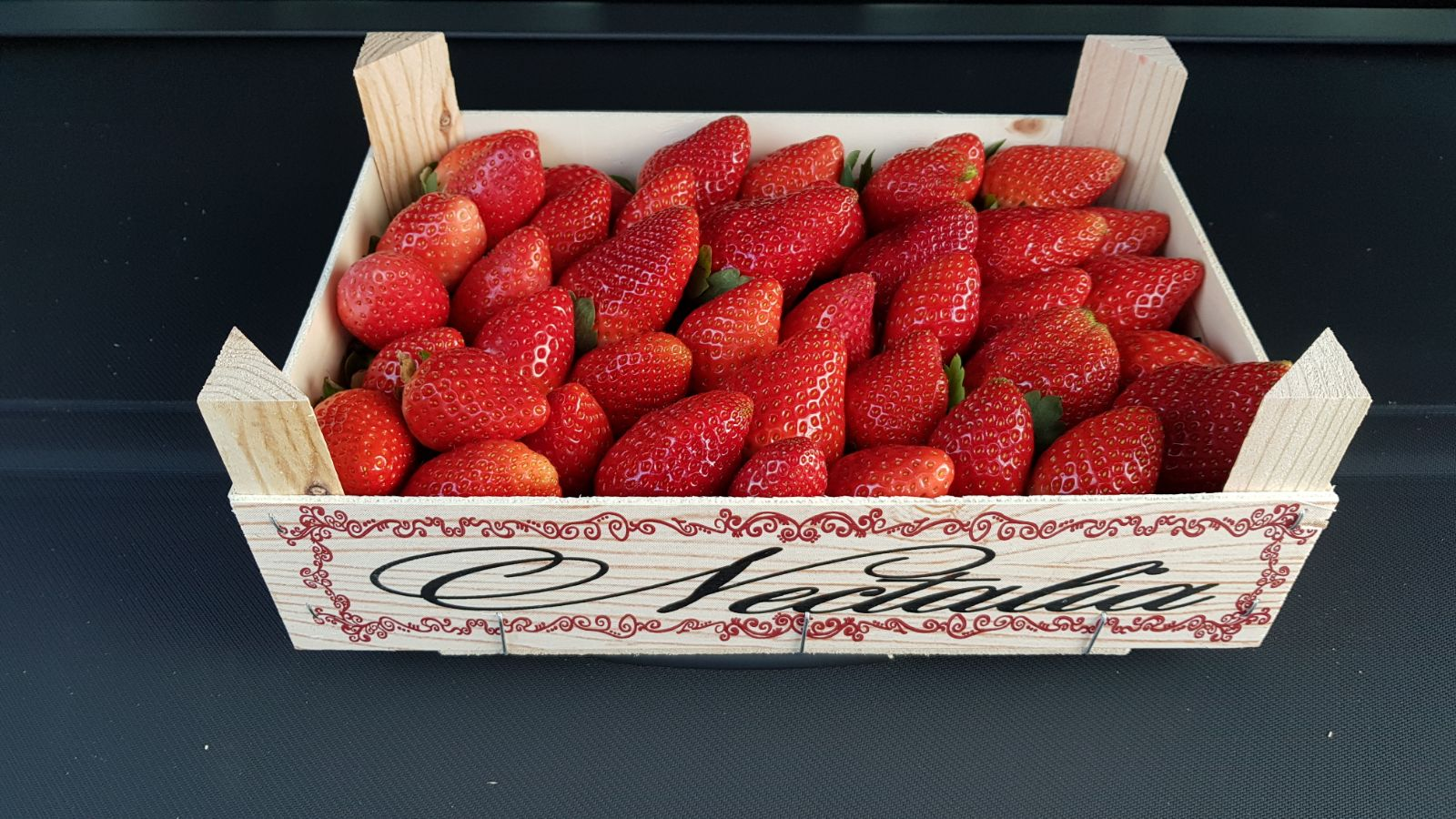fresas-caratula